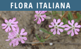 Flora Italiana